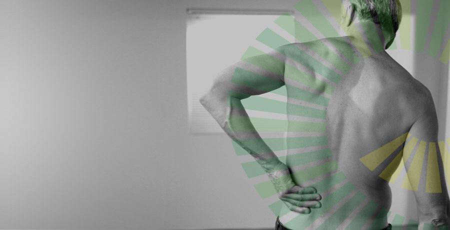 Slide5-muscle